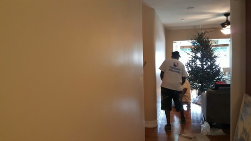 Interior Painting in Delray Beach, FL